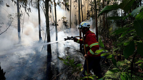 Devastating forest fire in Portugal under control
