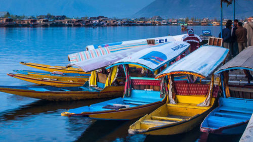 J&K: Tourism collapses, as stone-pelting images dominate TV