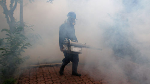 Sri Lanka begins clean-up of cities to battle dengue