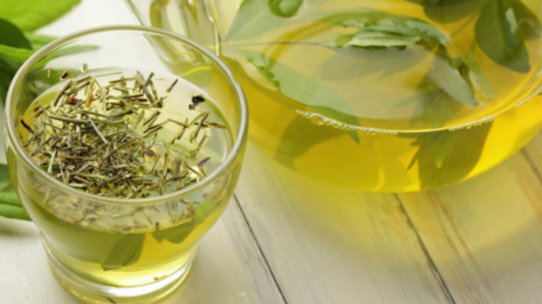 Here's why you should drink green tea