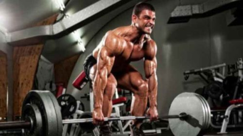 Decoded: How lifting heavy weights boosts muscle strength