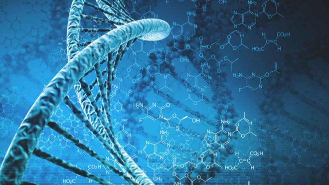 75 per cent of human genome is junk DNA: Study