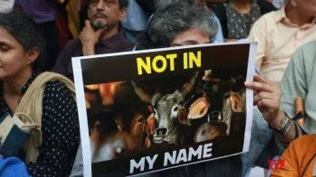 Indian Americans hold protests against mob lynchings in India
