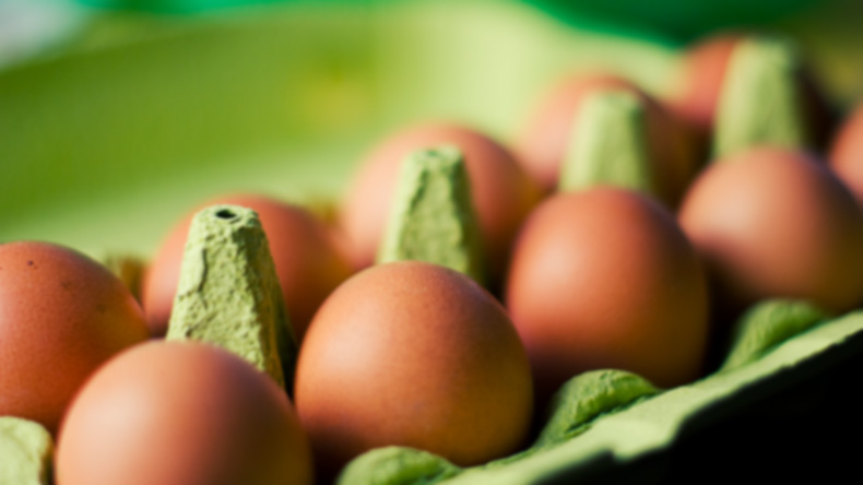 More pesticide-contaminated eggs detected in S.Korea