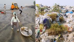 Halted in its 109th week, Versova beach clean-up might restart again; know why