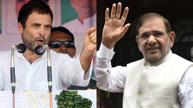Gujarat Assembly elections 2017: Congress in talks with NCP, JDU over alliance in state