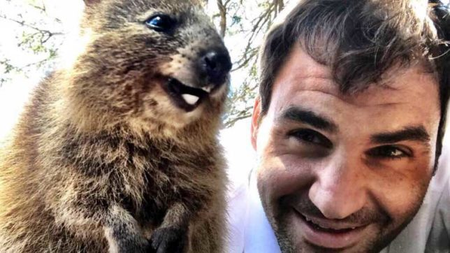 Roger Federer's selfie with world's happiest animal will light up your day