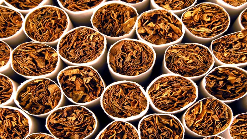 tobacco industry in pakistan Progress in tobacco control in egypt and defeated through the efforts of the strong tobacco industry in tobacco control in egypt and pakistan.