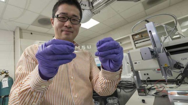 Stretchable-Tablet