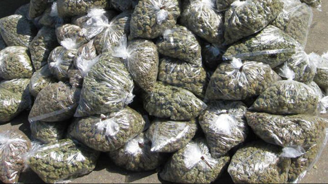 weed-seized-in-assam
