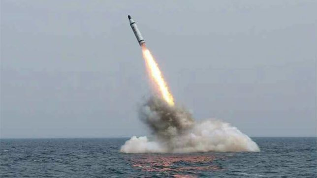 After N Korea's ICBM launch, S korea and US stage missile exercise