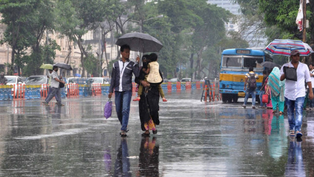 Indian monsoon has recovered from 50-year dry spell: Scientists