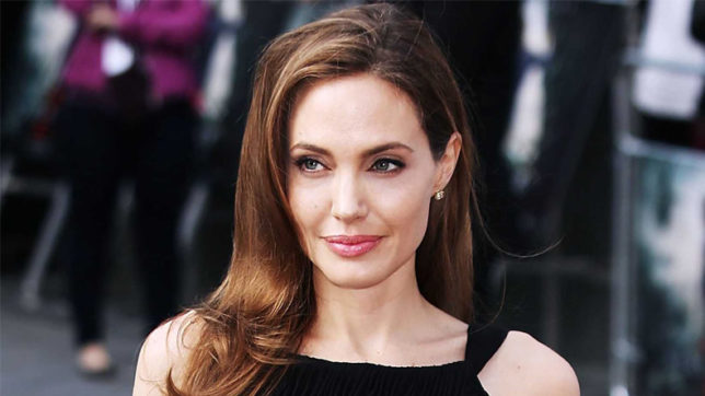 Angelina Jolie never considered other careers