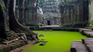 Cambodia's Angkor Wat, Cambodia's Angkor Wat archeological park, Xinhua, Chinese, South Koreans, American, Hindu God Vishnu, Buddhist temple, Unesco's World Heritage, travel news, current news, latest news, top news