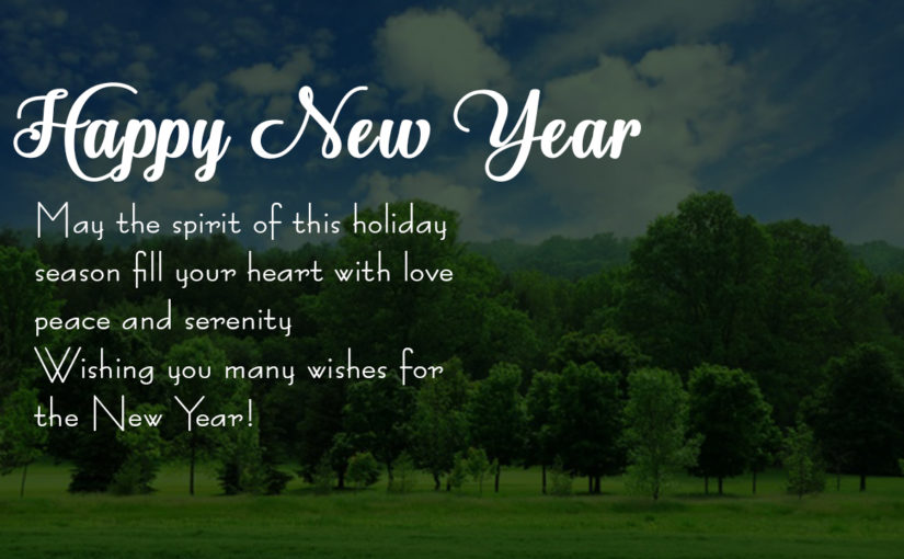 Happy new year messages and wishes in english for 2018 whatsapp cheers to the new year which will hopefully be full of good luck and happiness m4hsunfo