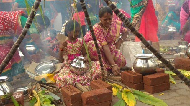 Pongal messages and wishes in English for 2018: WhatsApp messages, Pongal wishes and greetings, SMS, Facebook posts to wish everyone