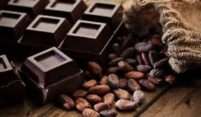 Chocolate likely to get extinct by 2050; scientists working towards saving endangered cocoa plant