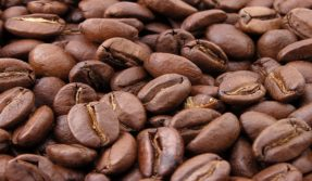 International coffee fest opens in Bengaluru