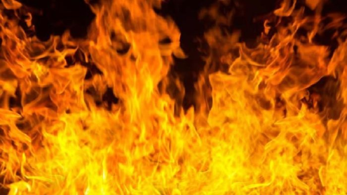 Fire breaks out at plastic godown in Bawana industrial area, at least 9 dead