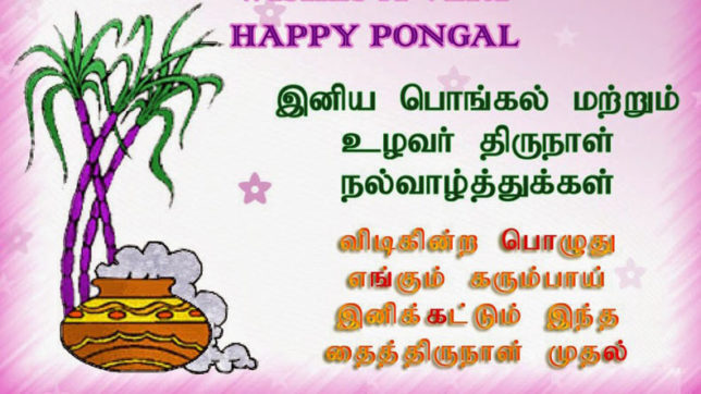 Pongal messages and wishes in tamil for 2018 whatsapp messages the pongal is also known as thai pongal thai refers to the tenth month of m4hsunfo