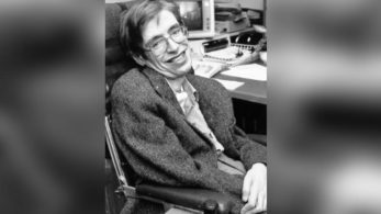 Stephen Hawking, Westminster Abbey, Sir Isaac Newton, Charles Darwin, Dr John Hall, Galileo Galilei, A Brief History of Time, Charles Darwin, Isaac Newton, Hawking, Naturalist, physicist, theoretical physicist, Science and technology news