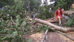 15 killed after twin storms at 98 km/hr lashes West Bengal
