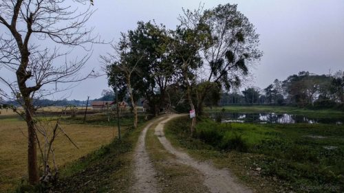 Man carries dead brother's body on bicycle in Assam's Majuli