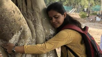 Chipko Andolan, Delhi High Court, No cutting of trees, July 2, National news