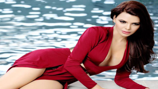 Dosti Friends Forever Jawani Diwani A Youthful Joyride Naughty Boy And Kamasutra 3d Failed To Work At The Box Office Actor Sherlyn Chopra