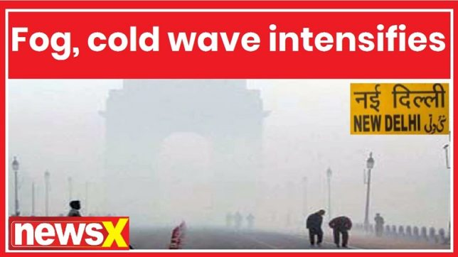 Delhi Winters 2018: Fog, cold wave intensifies in several parts of Northern India