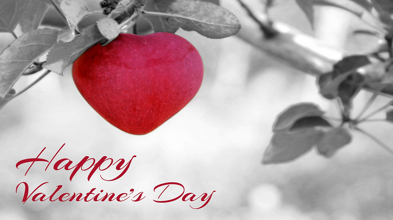 Happy Valentine's Day Shayari in English 2019, Valentine's Day Romantic Shayari, Valentine's Day love status, beautiful Valentine's Day images for Girlfriend, beautiful Valentine's Day images for Boyfriend, beautiful Valentine's Day images for Lovers, beautiful Valentine's Day images for husband, beautiful Valentine's Day images for wife