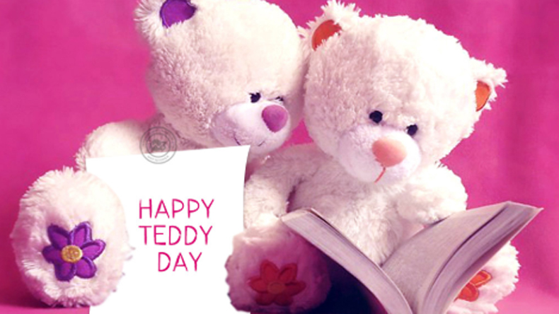 Teddy day 2019, valentines day, teddy day pic