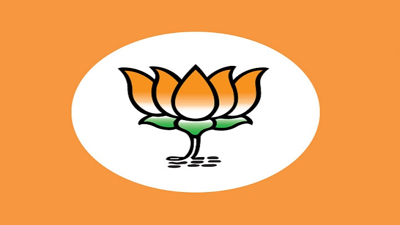 Lok Sabha elections 2019: BJP to field all new faces for 11 seats in Chhattisgarh