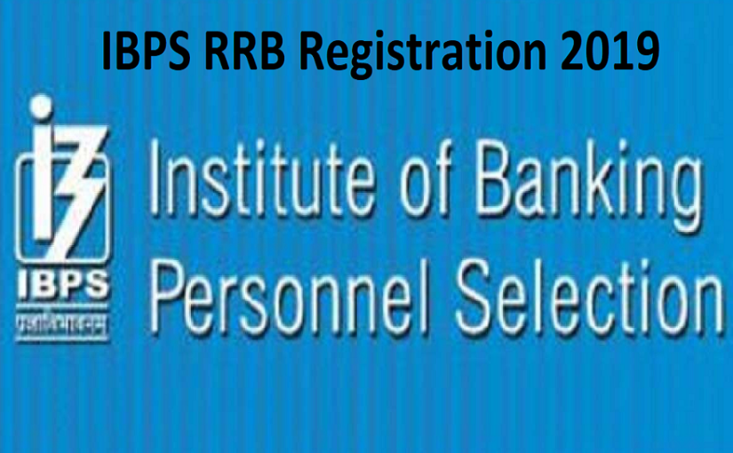 IBPS RRB Clerk Exam 2019 to be held from August 17, check exam pattern and other details @ibps.in