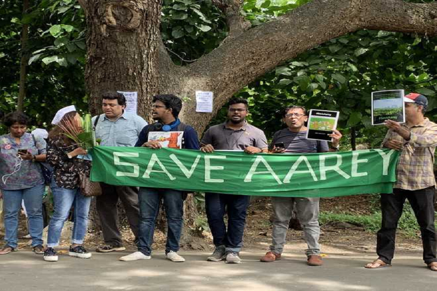 Aarey tree cutting: 2,500 trees cut down, chopping to be completed by evening, fear of detention keep protesters away